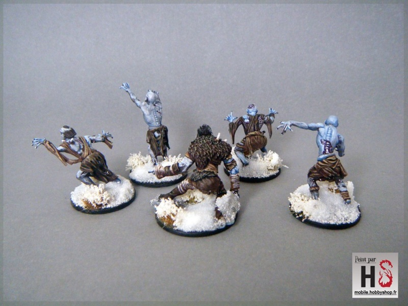 Galerie de Greg: Expedition Frostgrave - Page 4 13321710