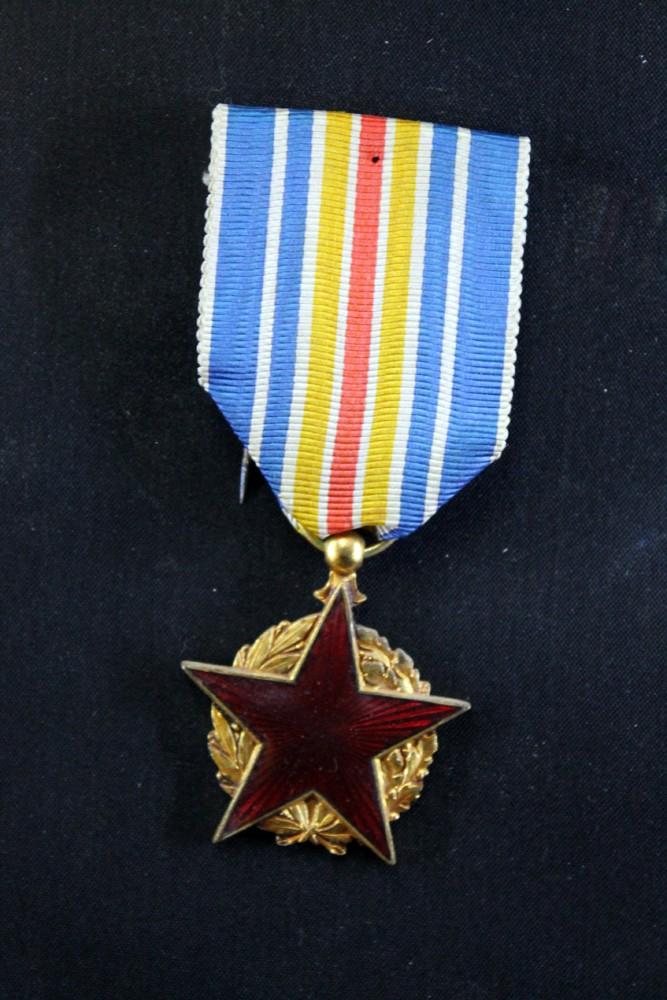 Médaille des Blessés - ESC 1 [VENDUE] Mb411