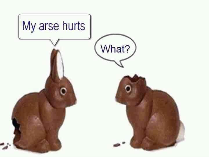 Easter bunnies 12027710