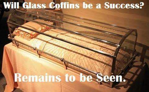 Glass Coffins 12923210