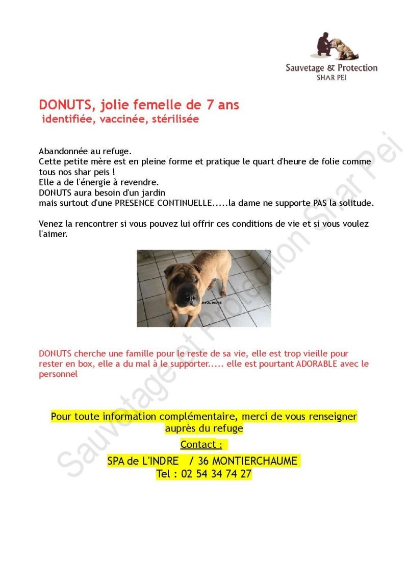 DONUTS Donuts10