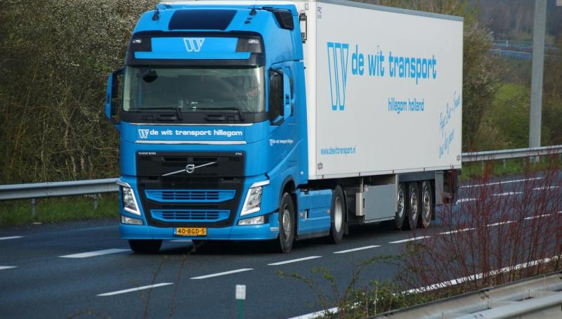 De Wit Transport (Hillegom) - Page 2 Img_1443