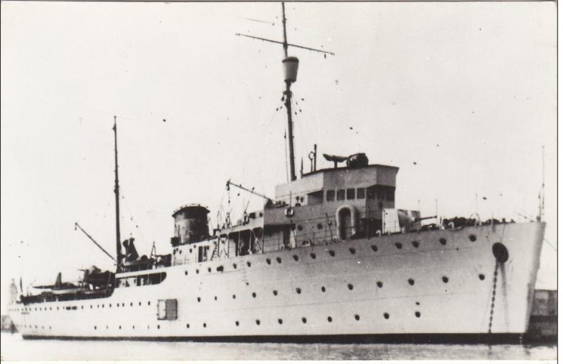 Marine Mexicaine  Durang10