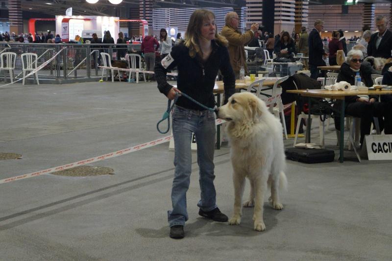 Exposition Internationale de Lyon (24 avril 2016) Dsc02811