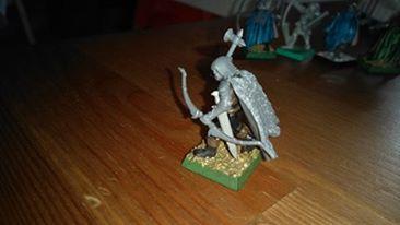 Ma bande Elfe noir Mordheim 13115811