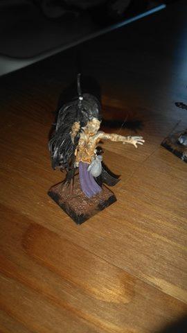 Ma bande Elfe noir Mordheim 13140910