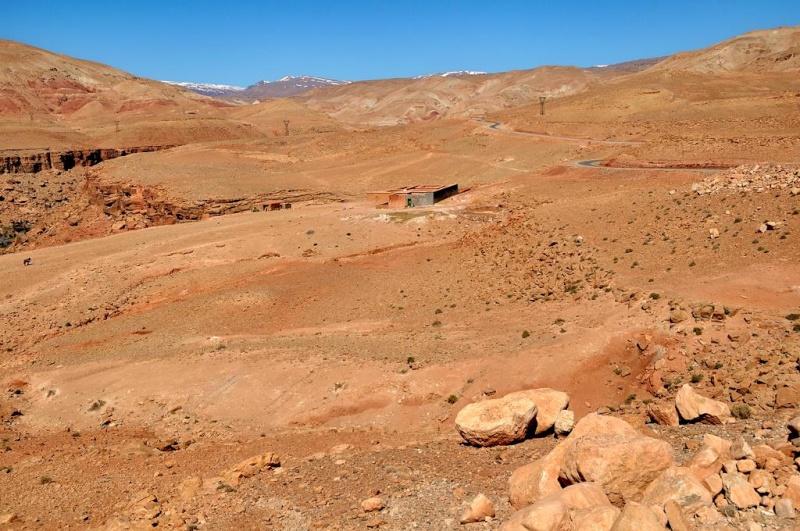 La vallée d'amoun Dsc_0710