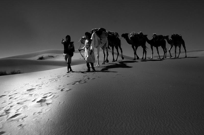 Mes ballades dans le désert de l'Erg Chebbi, Merzouga. La_voi10