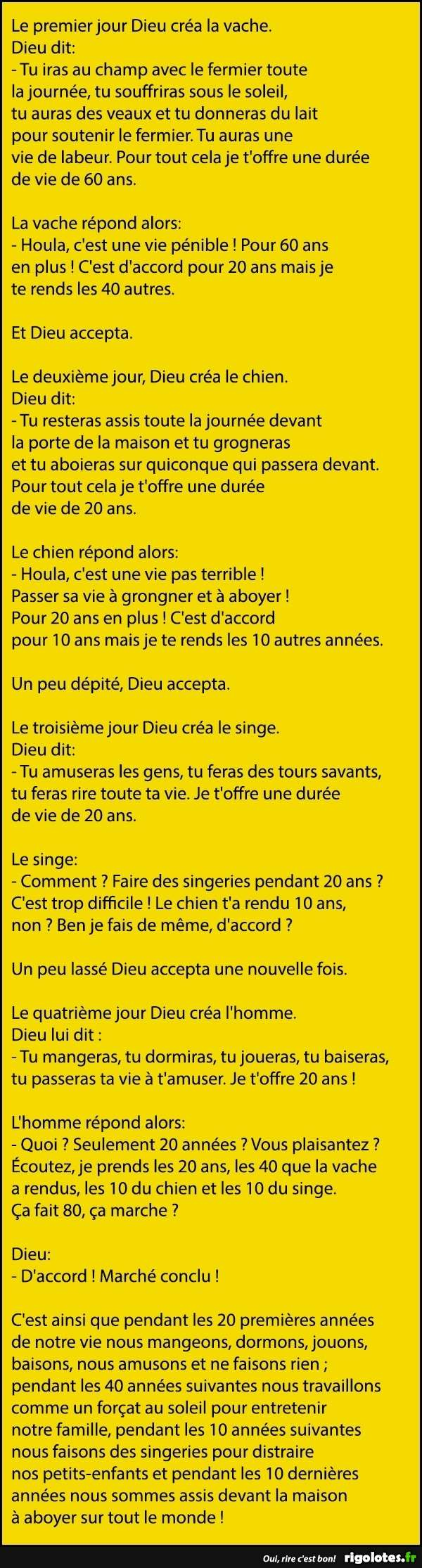 HUMOUR - blagues - Page 18 11312210