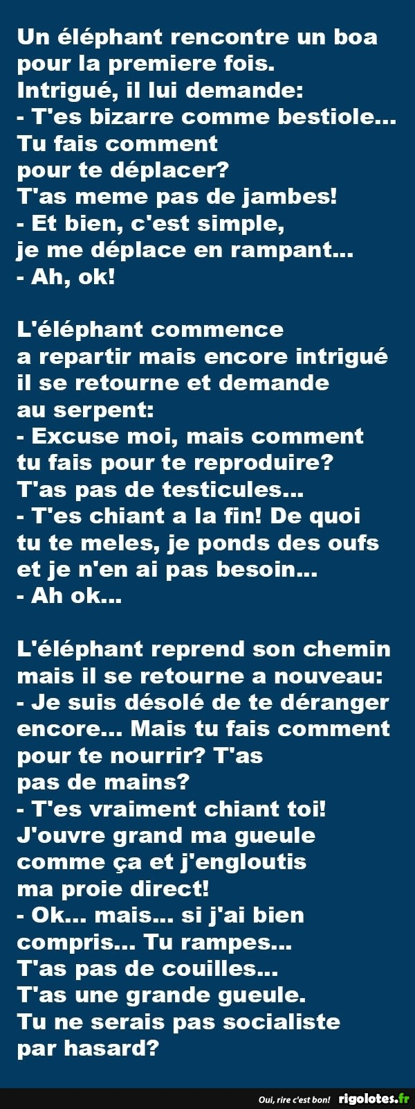 HUMOUR - blagues - Page 17 535210