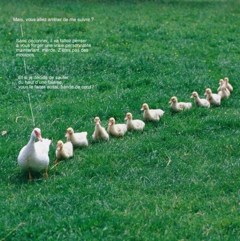 HUMOUR - Drôles de bêtes... - Page 17 C7202_10