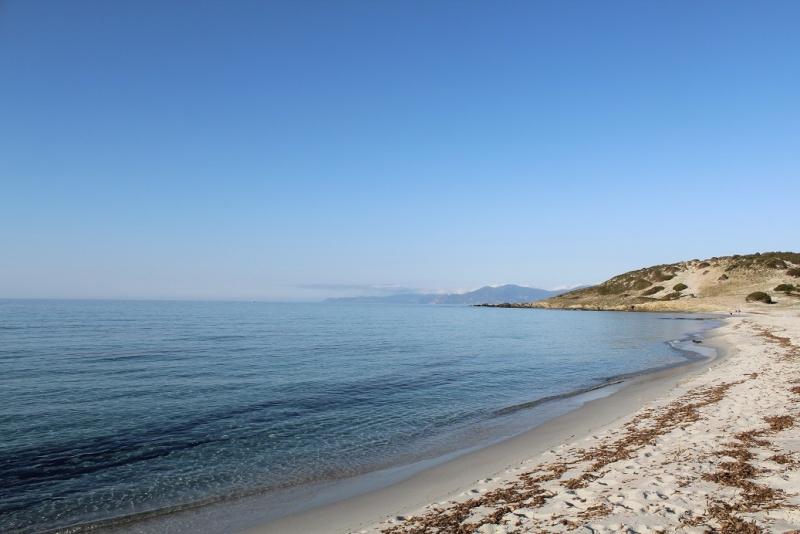 Une tranche de Corse... Sauce Trail ! 110