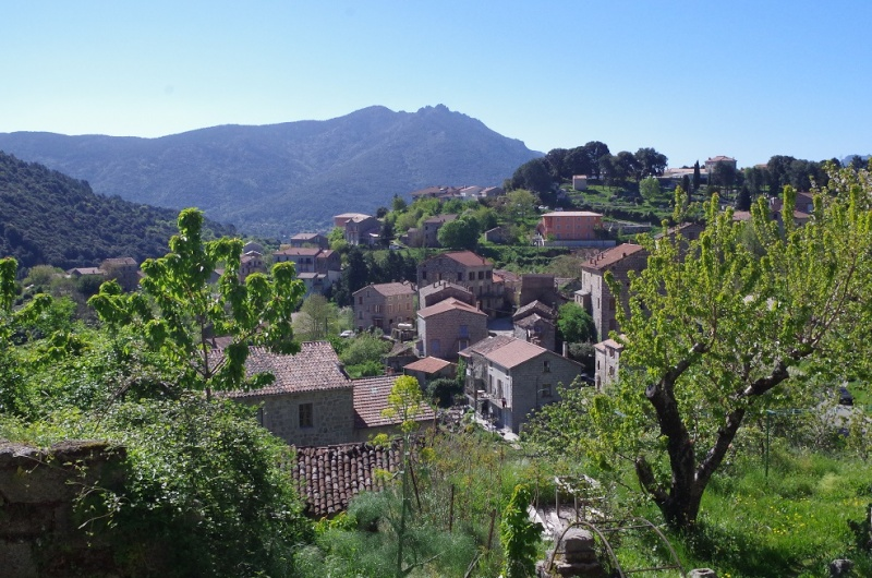 Une tranche de Corse... Sauce Trail ! 1610