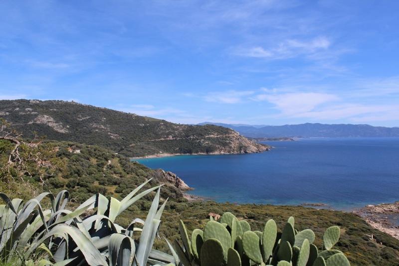 Une tranche de Corse... Sauce Trail ! 2610