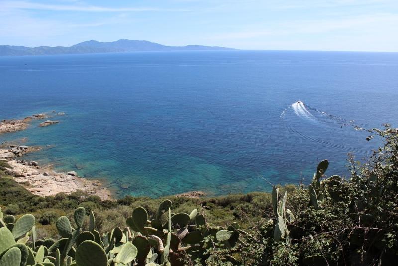 Une tranche de Corse... Sauce Trail ! 2710