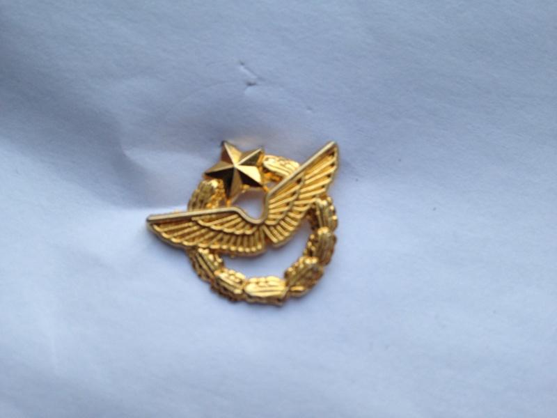 Grouping d'un FAFL Groupe Bombardier LORRAINE+ Médaille et insigne (New 29/03) Img_4419