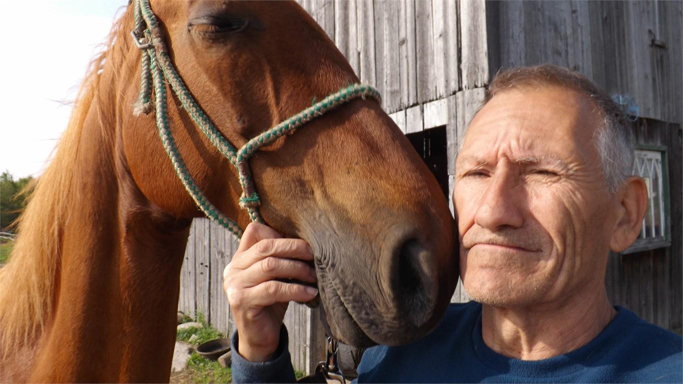 mon cheval préféré actuellement  Dscf2610