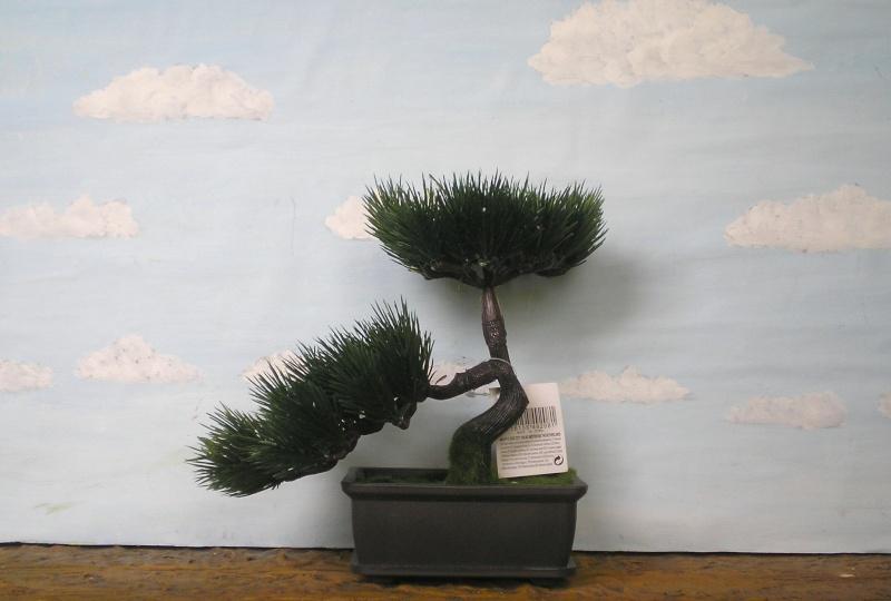 Preiswertes Material zur Pflanzengestaltung 70_mm_15
