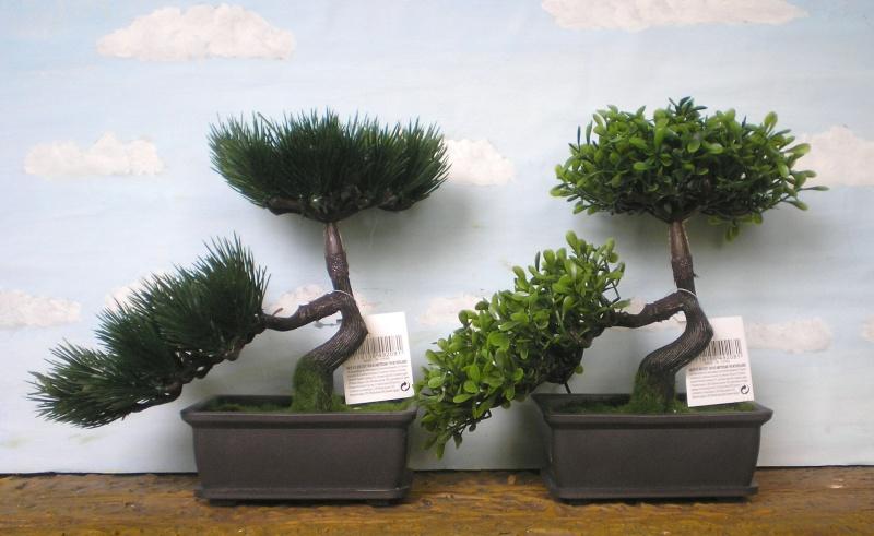 Preiswertes Material zur Pflanzengestaltung 70_mm_16