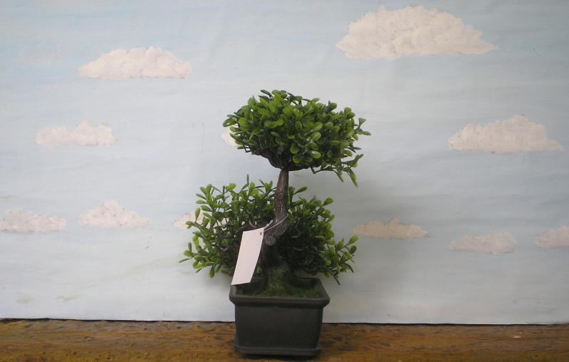 Preiswertes Material zur Pflanzengestaltung 70_mm_21