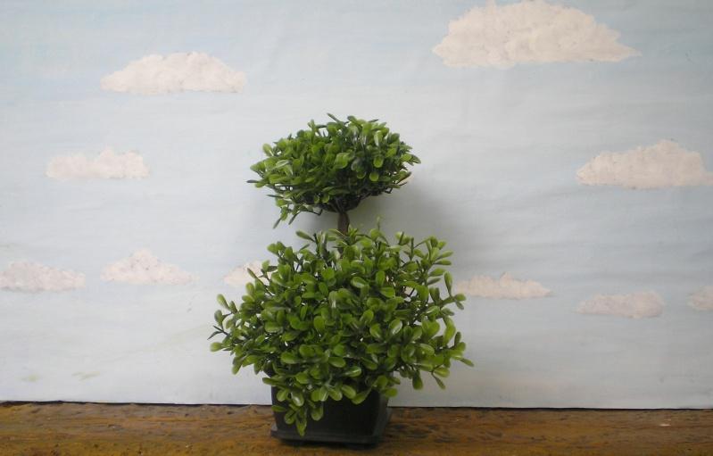 Preiswertes Material zur Pflanzengestaltung 70_mm_22