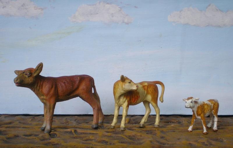 Meine Longhorn-Herde wächst - Seite 3 Elasto55