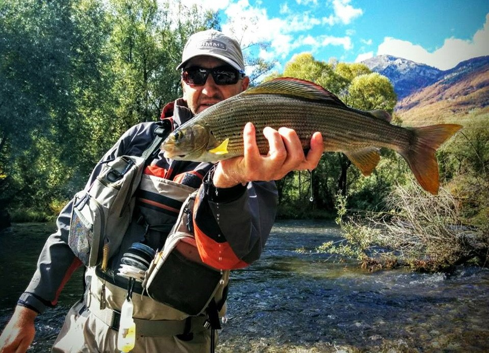 (FLY) FISHING MONTENEGRO (guiding, accommodation, etc.) - Page 2 10888410
