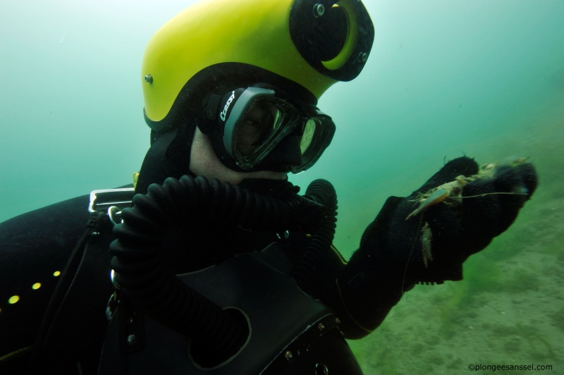 Cousteau chez les Helvètes, chapitre deux _dsc9217