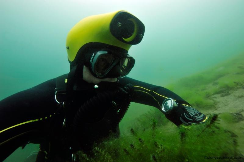 Cousteau chez les Helvètes, chapitre deux _dsc9312