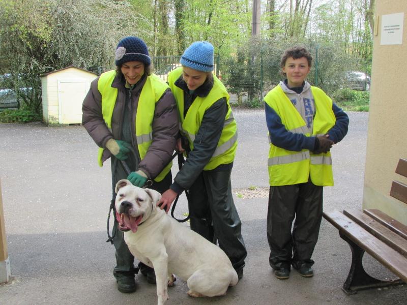 KAYA Femelle DOG ARGENTIN - Page 2 01317