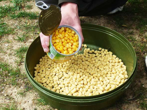 Pellet vs Baby corn P1020910