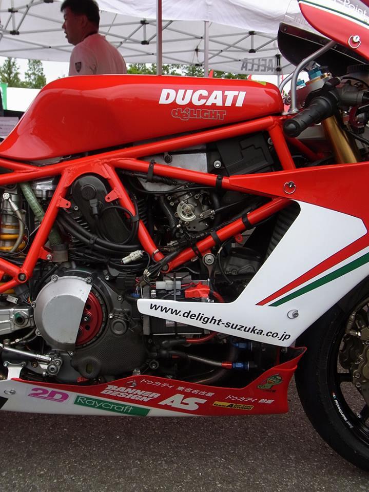 Ducat' DeLight 12963410