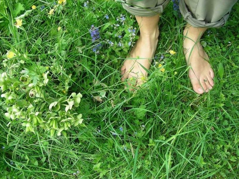 Marcher pied nus dans la nature Image125