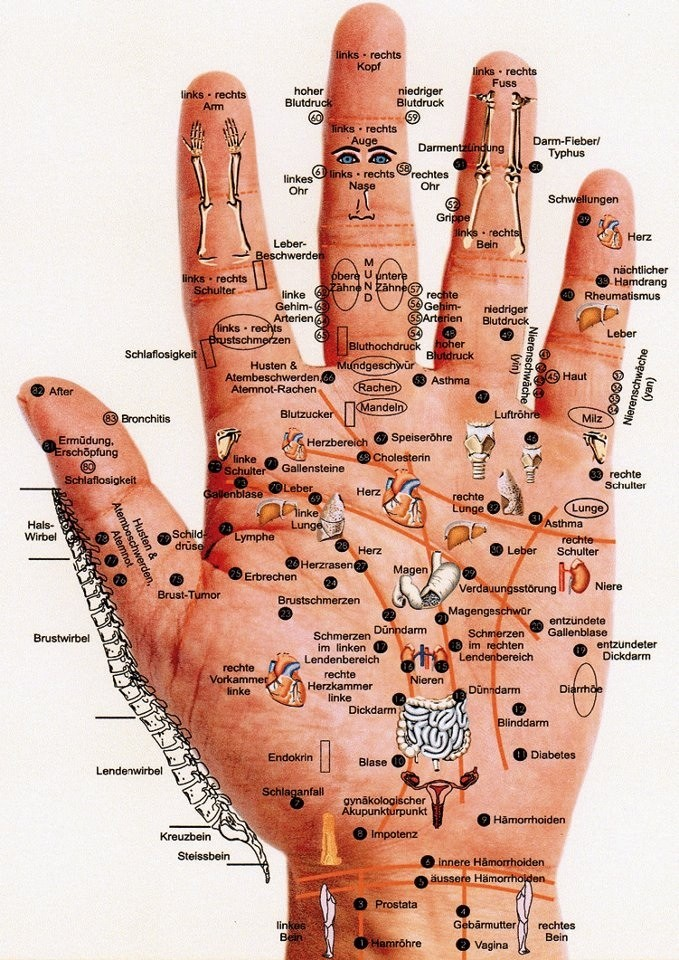 Iridologie et science des correspondances Image153