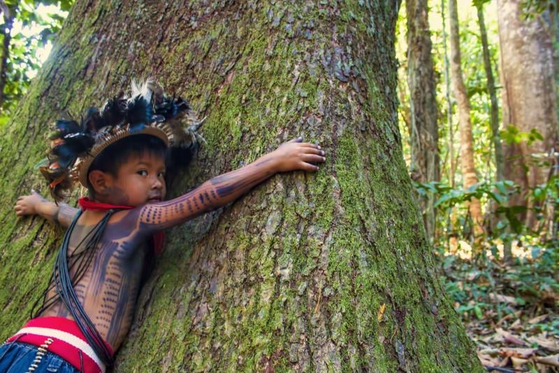 Une tribu amazonienne créé une encyclopédie de médecine traditionnelle Image178