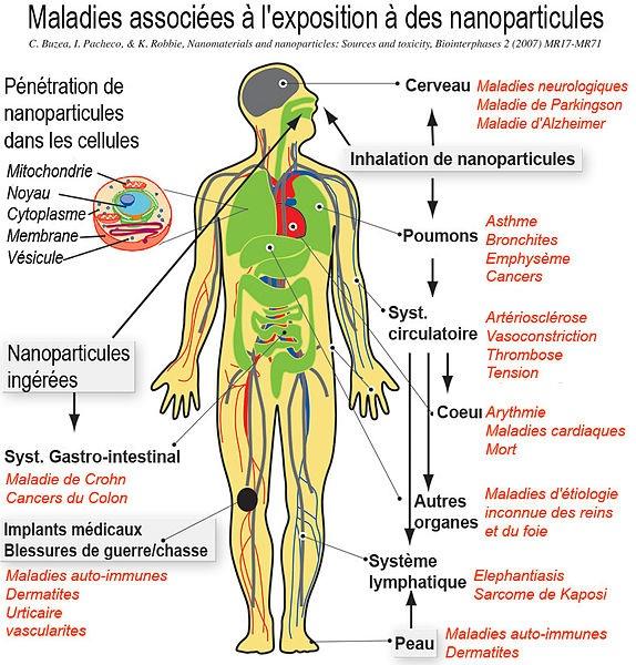 DOSSIER: Danger des nanoparticules Image188