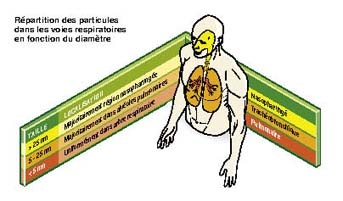DOSSIER: Danger des nanoparticules Image191