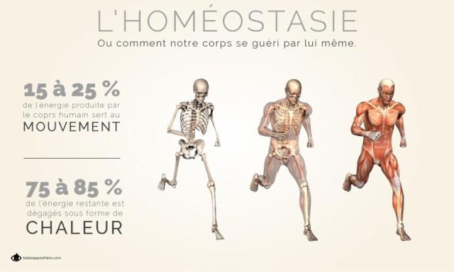 L'Homéostasie ( Ou comment notre corps se guéri tout seul) Image195