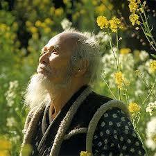 Mieux que la permaculture, la méthode Fukuoka Image23