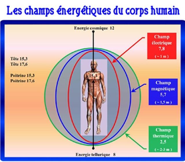 L'homme électromagnétique Image265