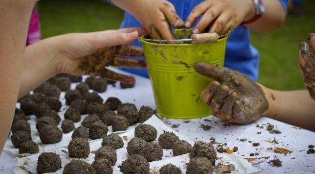 Comment fabriquer des bombes de graines pour revégétaliser nos villes Image267