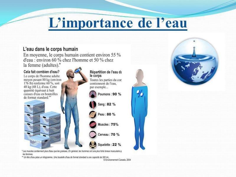 L'eau est importante pour notre corps Image30