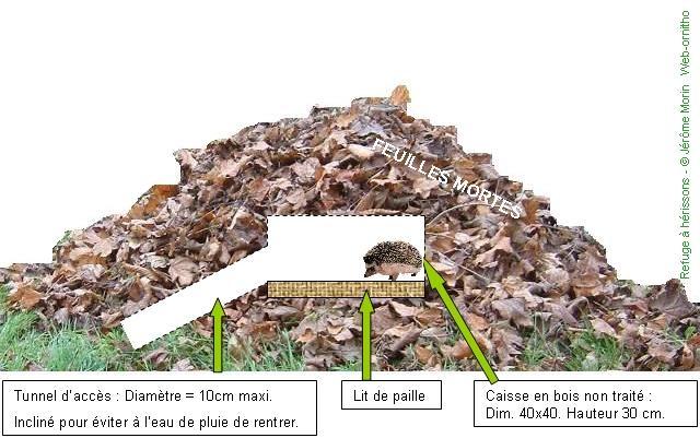 Comment fabriquer des hotels pour insectes et amis du jardinier Image31