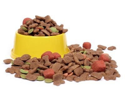 La nourriture industrielle pour nos animaux: Un vrai scandale! Image55