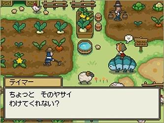 Fantasy Life (Test 3DS) Fantas10