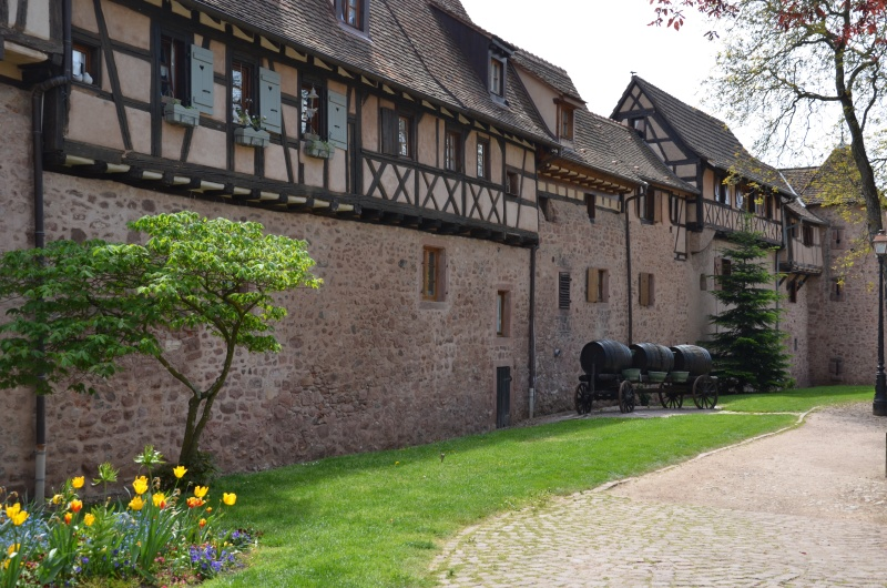 Direction l'Alsace Dsc_0127