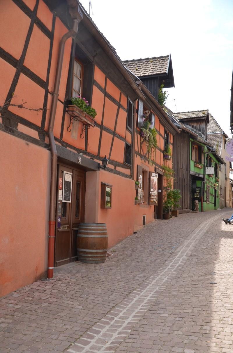 Direction l'Alsace Dsc_0130
