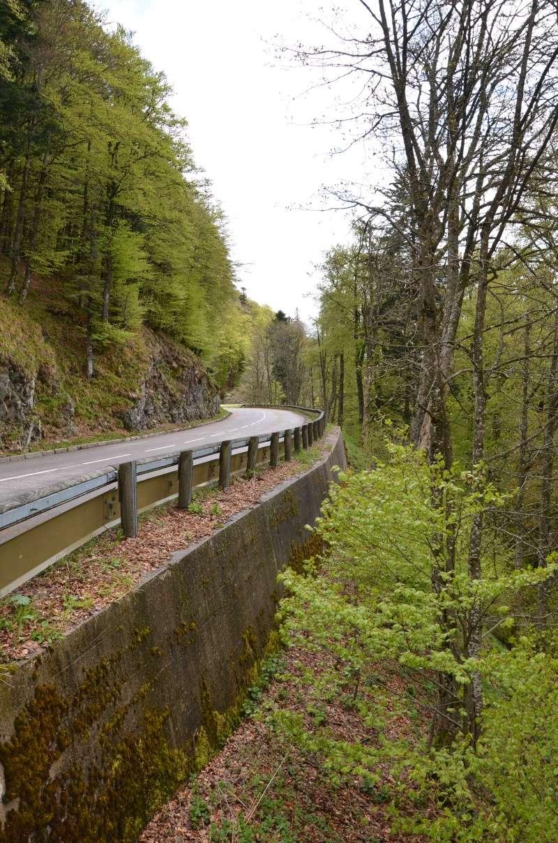 Direction l'Alsace Dsc_0215