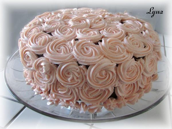 Glaçage avec pouding au chocolat blanc Gateau12
