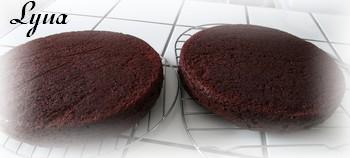Gâteau au chocolat le meilleur-meilleur de Ricardo Gyteau10